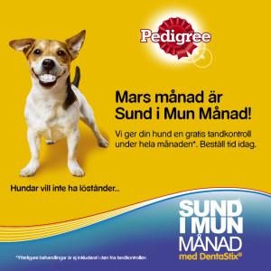 Pedigree Sund i Mun Manad ad 720x720